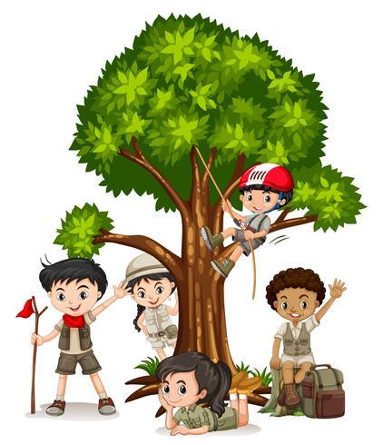 Niños y niñas trepando árboles