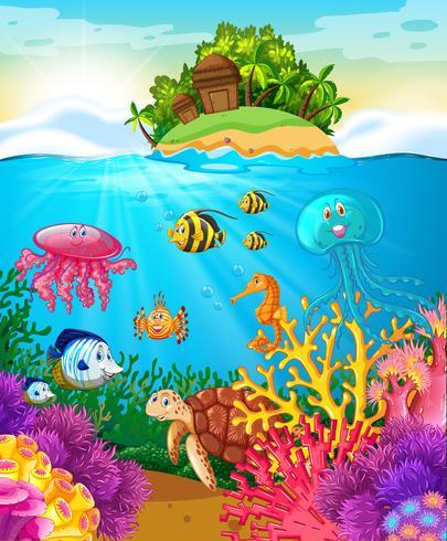Sea animals swimming under the sea