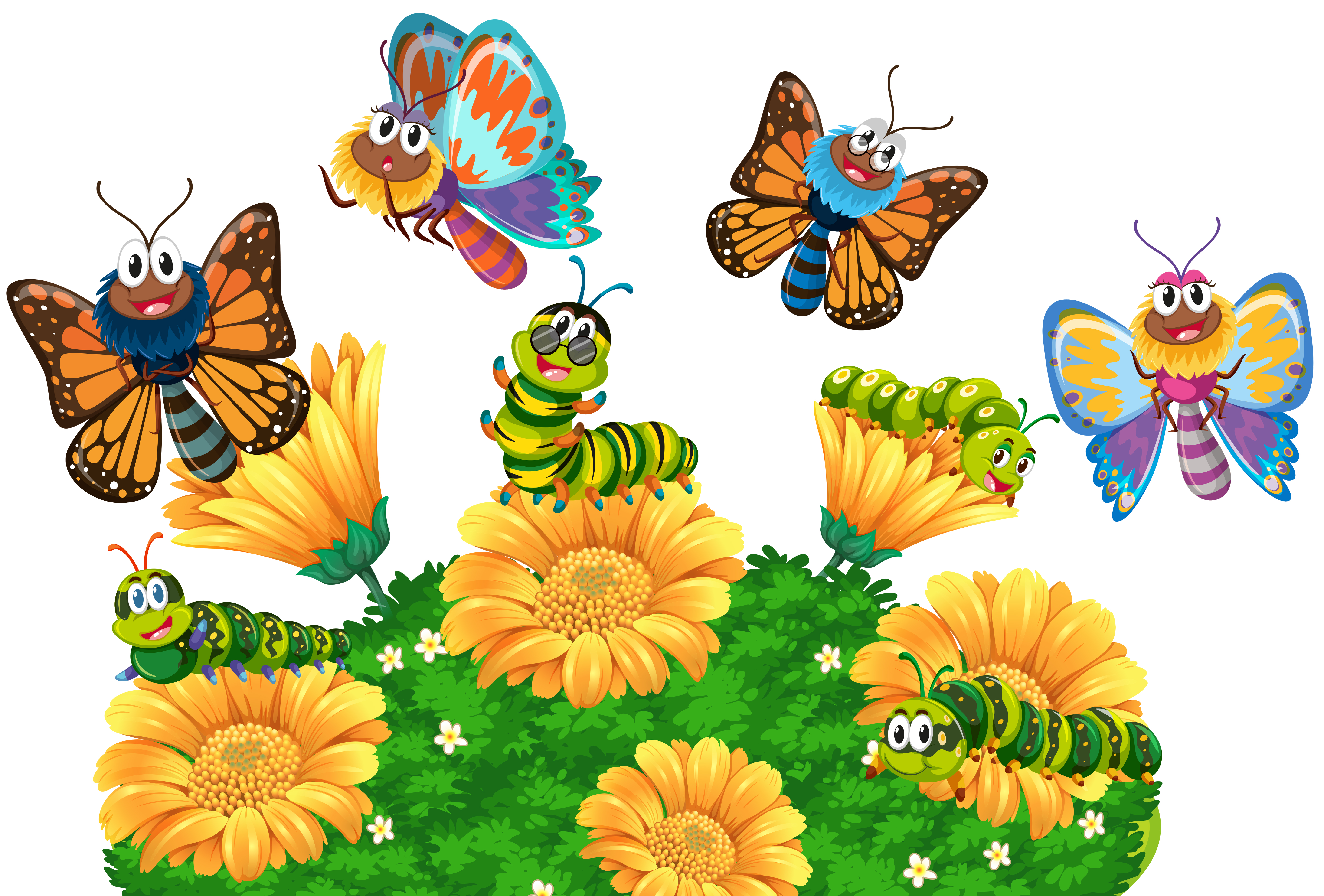 Caterpillars and butterflies in the garden - Download Free ... (5701 x 3859 Pixel)