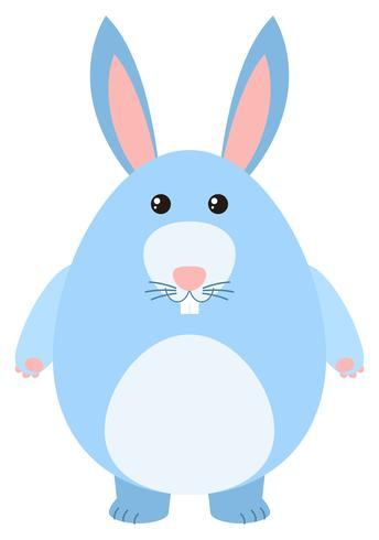 Blue bunny on white background
