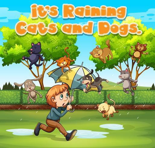 Idiom Ausdruck für es regnet Katzen und Hunde vektor