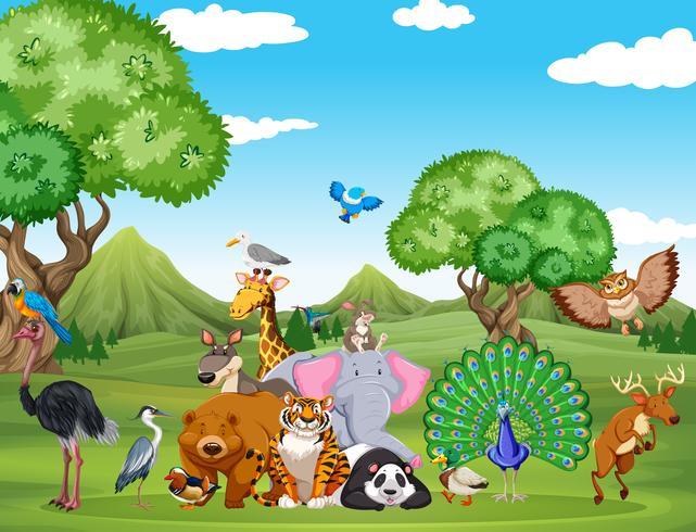 Waldszene mit vielen wilden Tieren