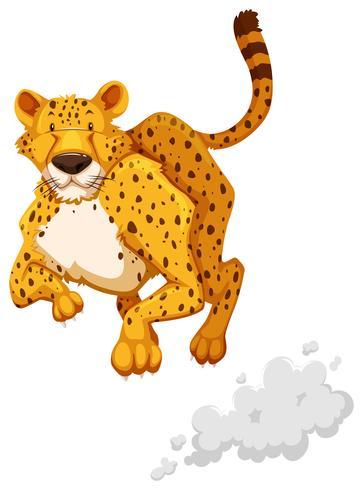 Leopardo cazador vector