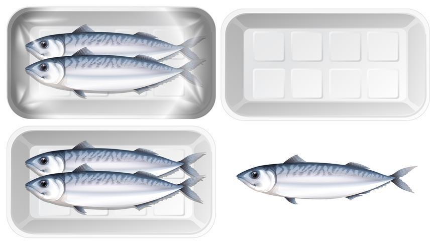 Set van makreel in pakket vector