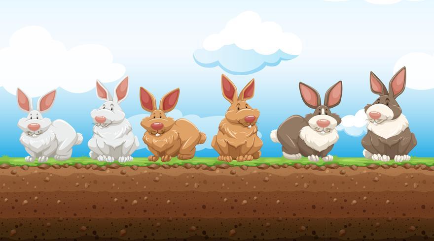 Conigli di Pasqua in piedi sul terreno