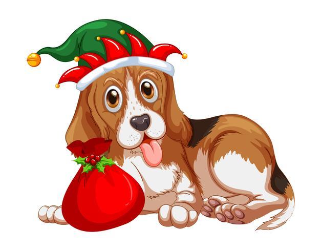 Cão de tema de Natal usando chapéu de festa