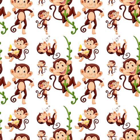 Mono sin costuras en diferentes acciones.