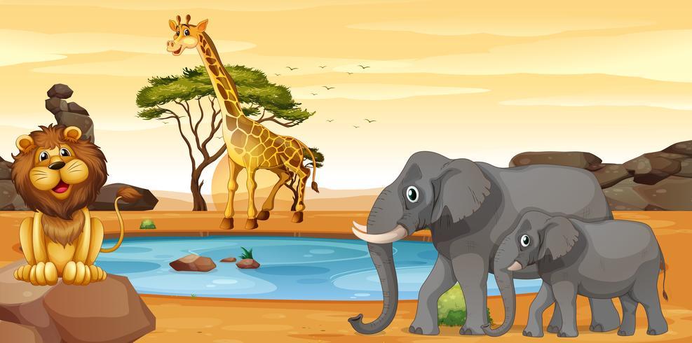 Animales salvajes por el pozo de agua. vector