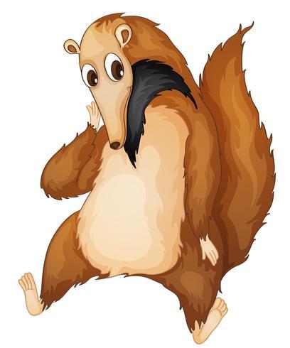 herr anteater