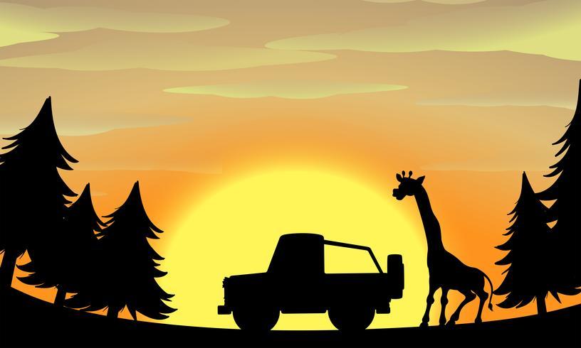Cena de natureza silhueta com girafa e jipe