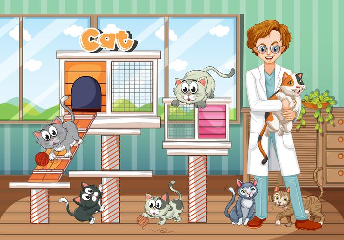 Hospital de animales con veterinario y gatos.