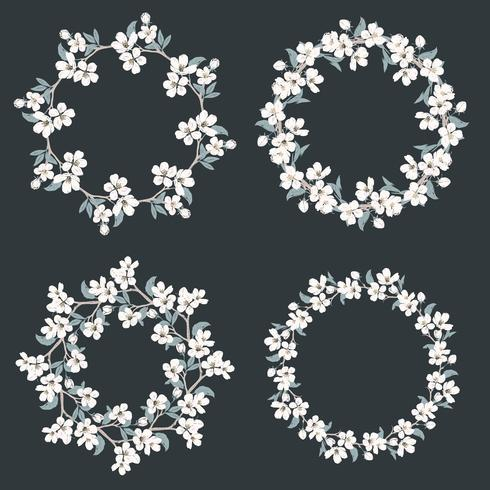 Set collection of floral frames. Chamomile and forget me-not-flowers round pattern on black background. vector