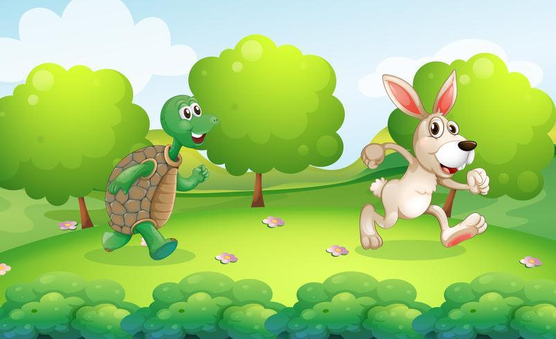 Tartaruga e coniglio in esecuzione nel parco
