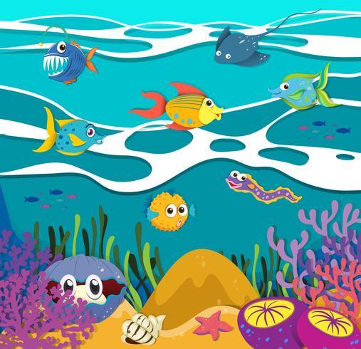 Fish and sea animals underwater vector