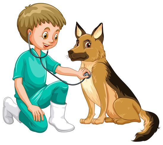 Dierenarts die hond met stethoscoop onderzoekt vector