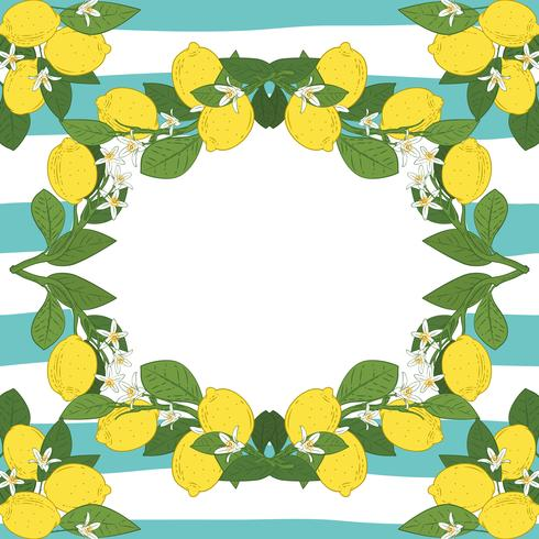 Card template with text. Tropical citrus lemon fruits frame on vintage turquoise blue linear background.