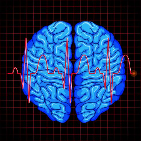Menselijk brein en hersengrafiek op rasters vector