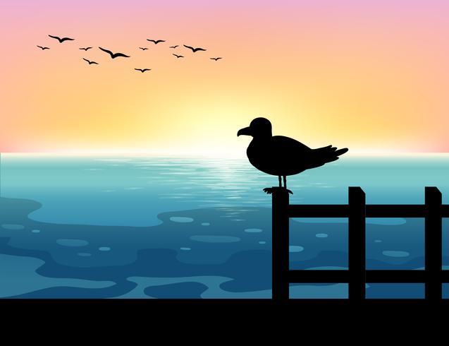Pássaro de Sihouette no mar