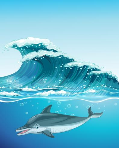 Dolfijn die onder de oceaan zwemt vector