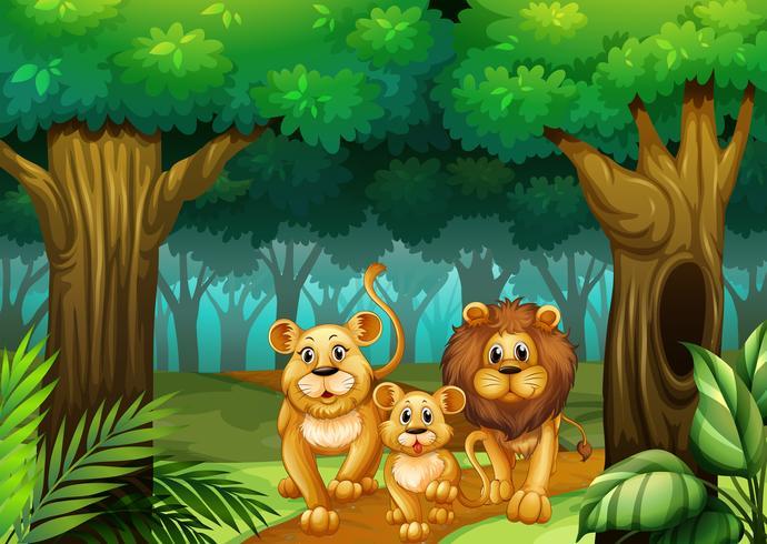 Familia de leones viviendo en el bosque. vector