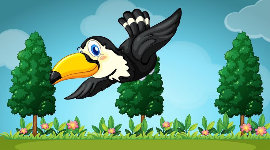 Tucano voando no jardim