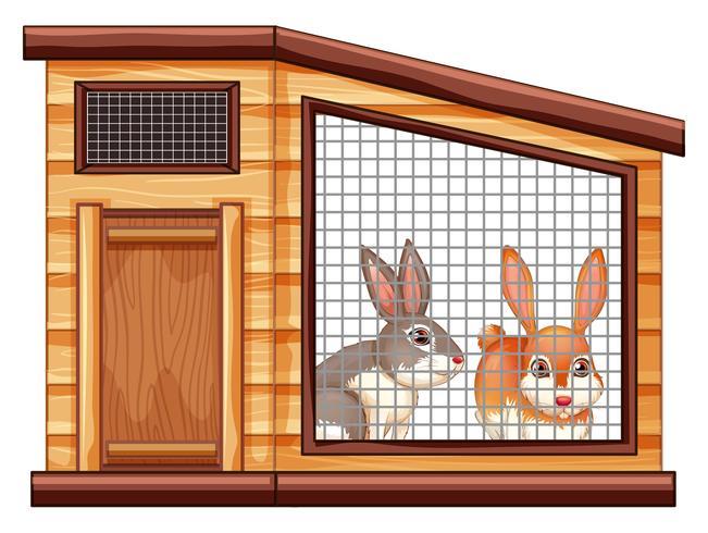 Två söta kaniner i coop