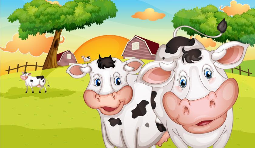 Een boerderij met veel koeien vector