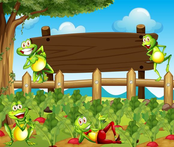 Kikkers en houten bord op de boerderij
