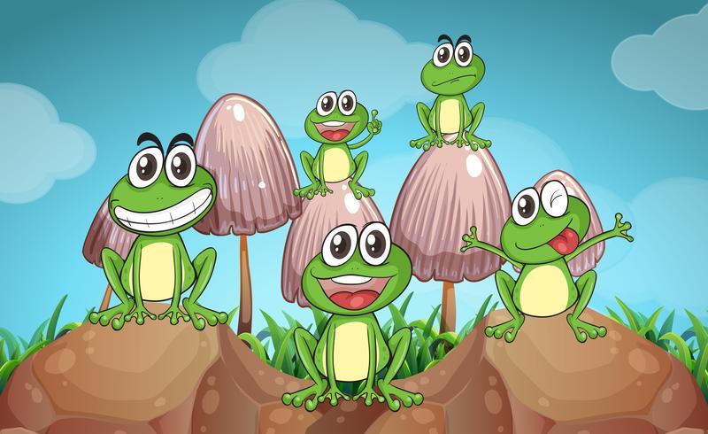 Scène avec des grenouilles et des champignons vecteur
