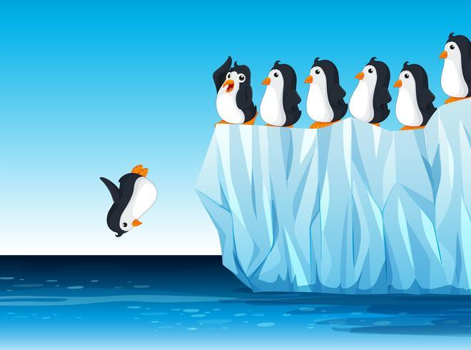 Pingouin sautant dans l'océan