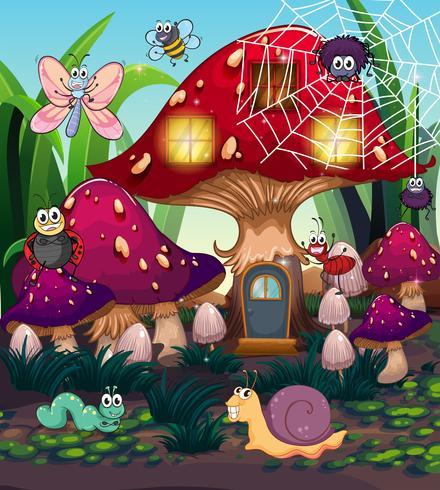 Insetti e casa dei funghi in giardino