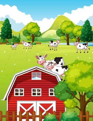 Farm scene with cows and barn vector