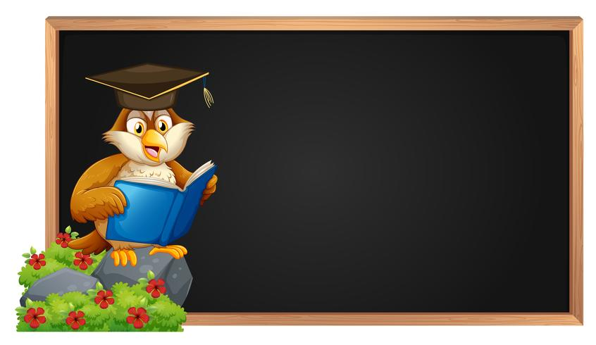 Empty blackboard and owl reading book