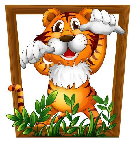 Tigre et cadre