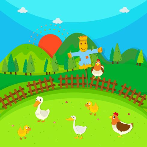 Espantapájaros en el campo lleno de patos y pollo.