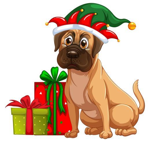Cão e presentes de natal