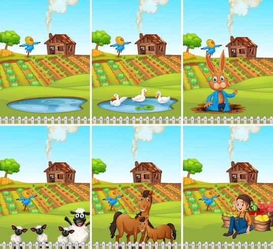 Set di animali e terreni agricoli