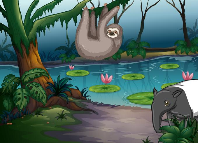 Animaux et étang