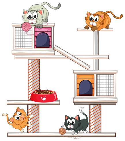 Cats playing on cat condo
