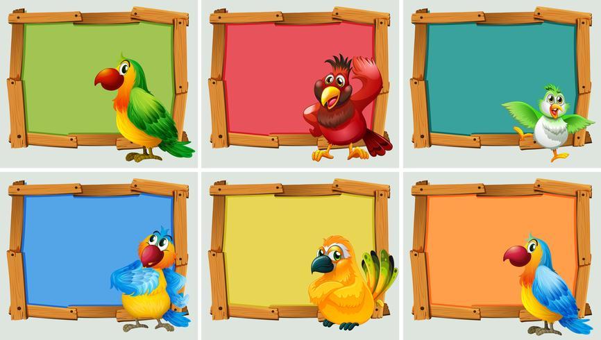 Dessin de cadre avec des perroquets vecteur