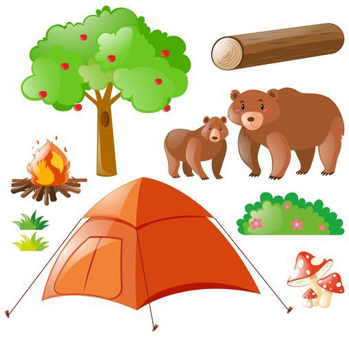 Osos y elementos de camping.