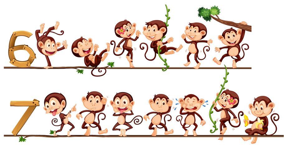 Apen en nummer zes en zeven