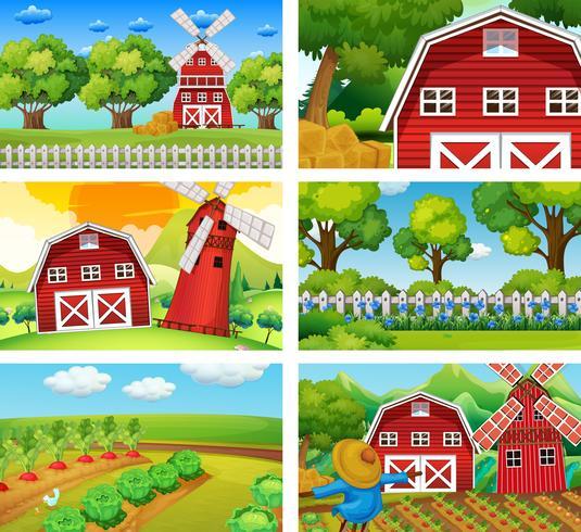 Zes verschillende scènes van boerderij