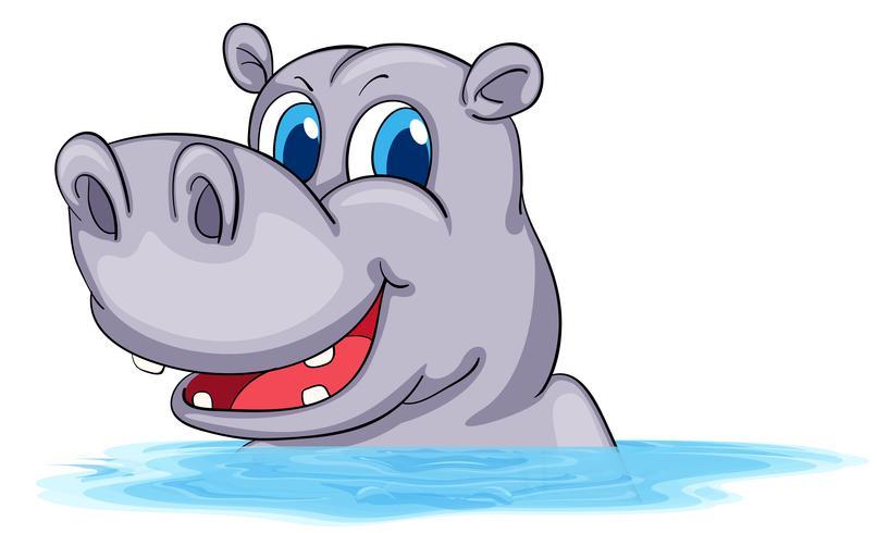 Hippo die in water zwemt