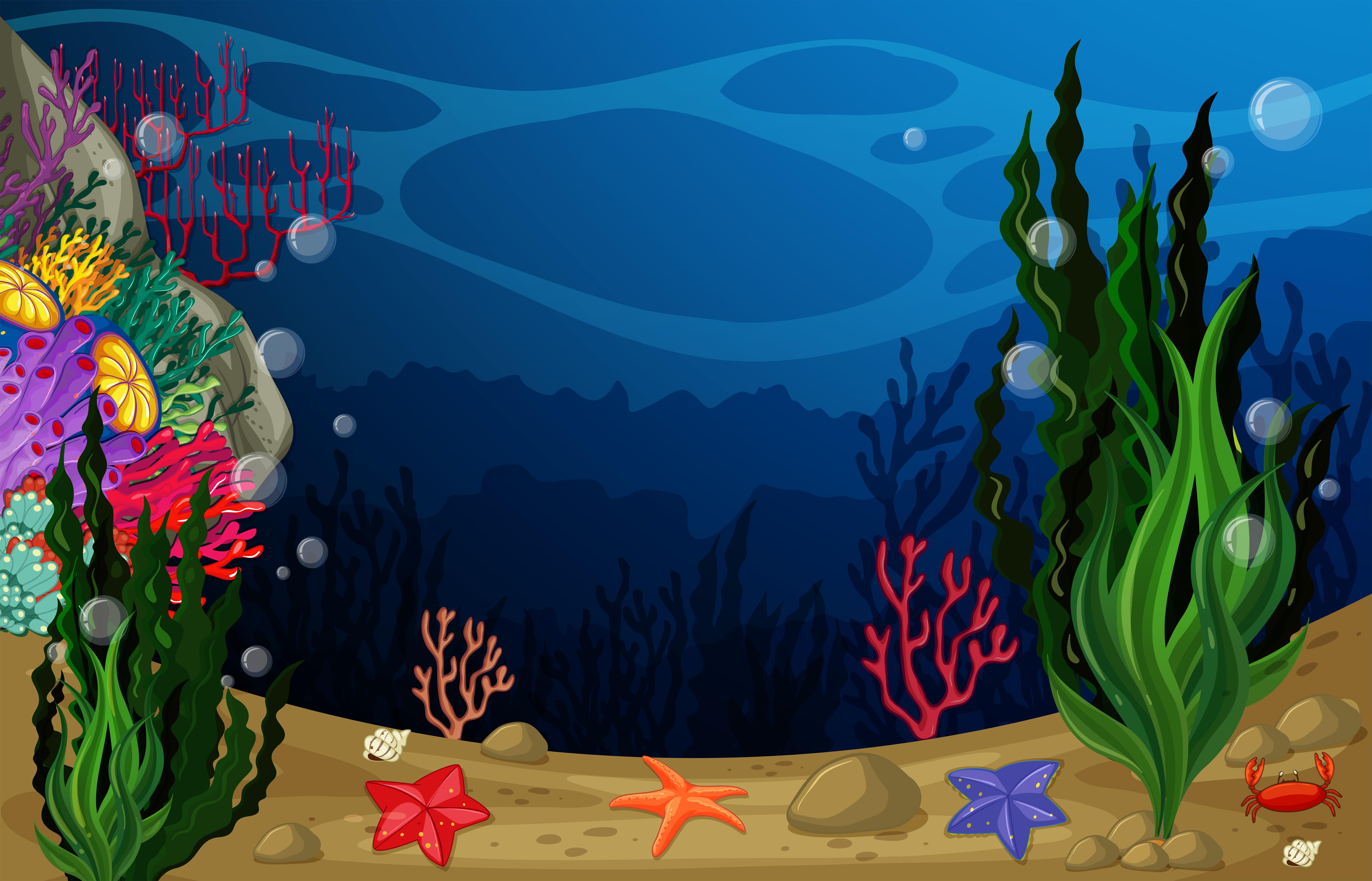 Underwater Plants Drawing