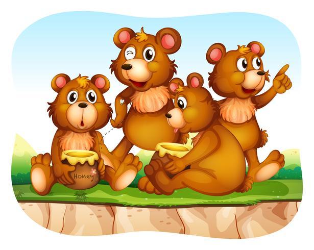 Urso pardo, comendo mel