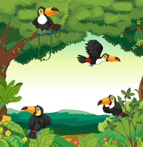 Scene with many toucans flying in forest