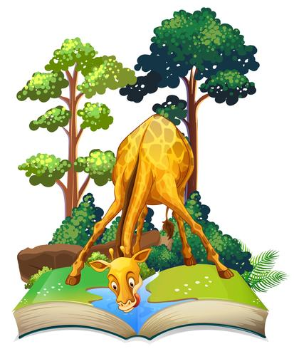 Giraffe drinking water in the book
