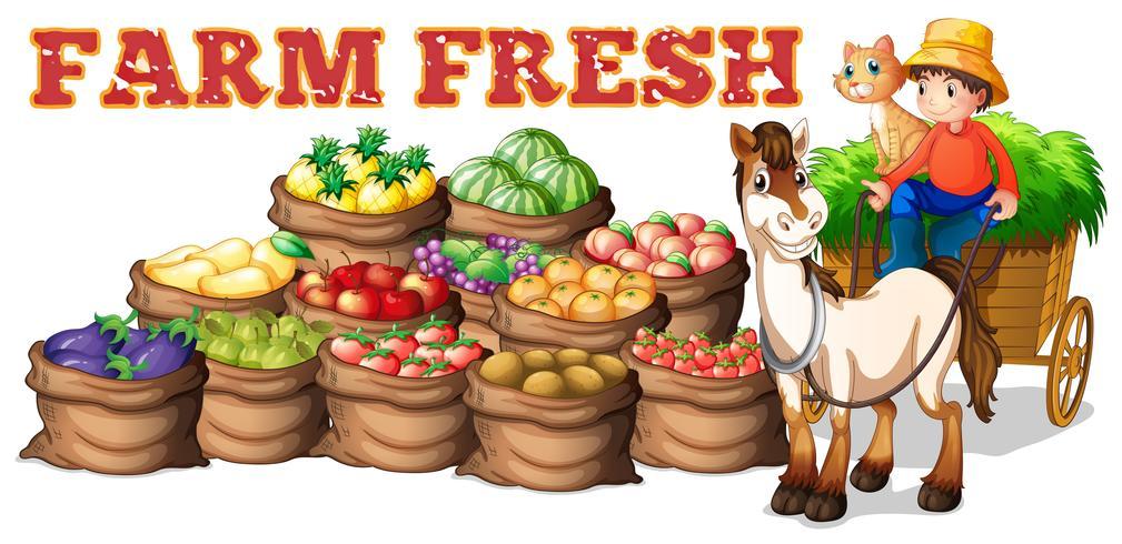 Coltiva prodotti freschi e agricoltore
