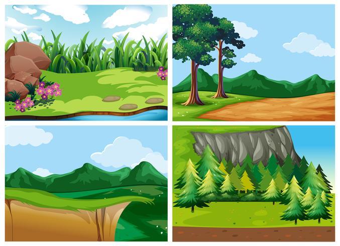 Cuatro escenas de bosque durante el día.